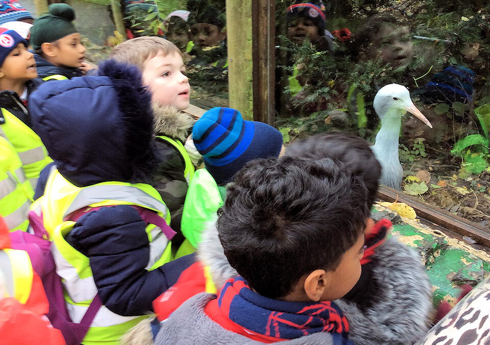 Year 1 at the Wildlife Conservation Park